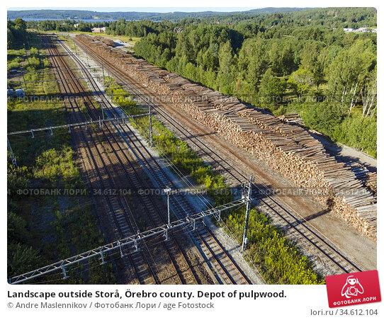 Landscape outside Storå, Örebro county. Depot of pulpwood. Стоковое фото, фотограф Andre Maslennikov / age Fotostock / Фотобанк Лори