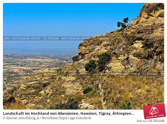 Landschaft im Hochland von Abessinien, Hawzien, Tigray, Äthiopien... Стоковое фото, фотограф Zoonar.com/Georg_A / age Fotostock / Фотобанк Лори