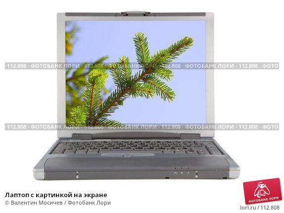 Купить «Лаптоп с картинкой на экране», фото № 112808, снято 16 февраля 2007 г. (c) Валентин Мосичев / Фотобанк Лори