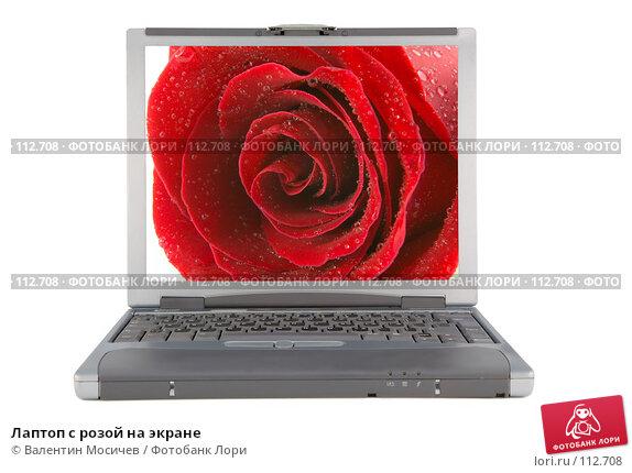 Лаптоп с розой на экране, фото № 112708, снято 16 февраля 2007 г. (c) Валентин Мосичев / Фотобанк Лори