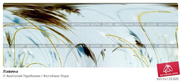 Купить «Лавина», фото № 23020, снято 21 марта 2018 г. (c) Анатолий Теребенин / Фотобанк Лори