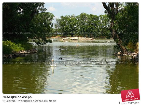 Лебединое озеро, фото № 317032, снято 8 июня 2008 г. (c) Сергей Литвиненко / Фотобанк Лори