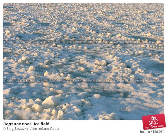Купить «Ледяное поле. Ice field», фото № 130064, снято 29 ноября 2004 г. (c) Serg Zastavkin / Фотобанк Лори