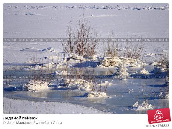 Ледяной пейзаж, фото № 176568, снято 12 января 2008 г. (c) Илья Малышев / Фотобанк Лори