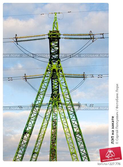 Купить «ЛЭП на закате», фото № 227776, снято 13 марта 2008 г. (c) Сергей Попсуевич / Фотобанк Лори