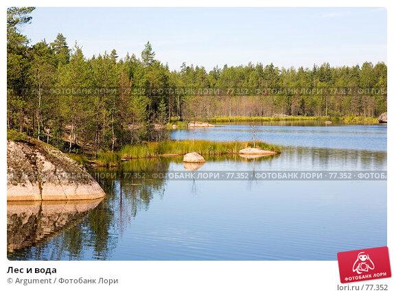 Купить «Лес и вода», фото № 77352, снято 10 августа 2007 г. (c) Argument / Фотобанк Лори