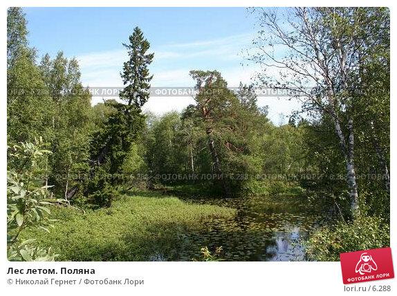 Лес летом. Поляна, фото № 6288, снято 7 июля 2006 г. (c) Николай Гернет / Фотобанк Лори