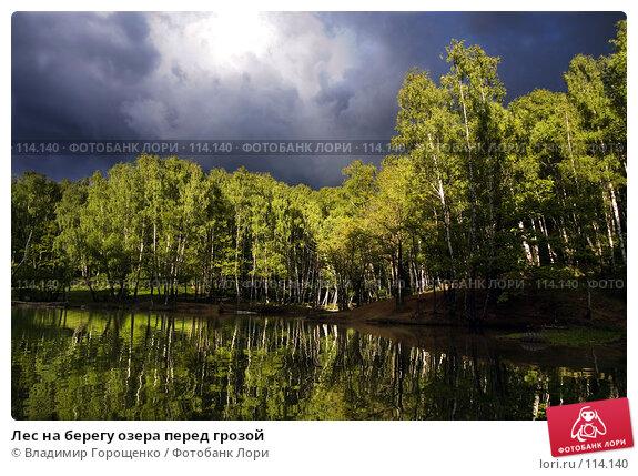 Купить «Лес на берегу озера перед грозой», фото № 114140, снято 30 мая 2006 г. (c) Владимир Горощенко / Фотобанк Лори