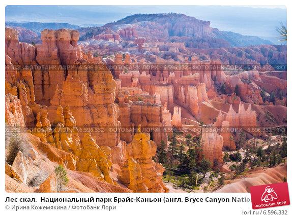 Купить «Лес скал.  Национальный парк Брайс-Каньон (англ. Bryce Canyon National Park)», фото № 6596332, снято 26 октября 2014 г. (c) Ирина Кожемякина / Фотобанк Лори