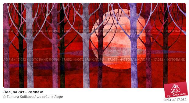 Лес, закат - коллаж, иллюстрация № 17052 (c) Tamara Kulikova / Фотобанк Лори