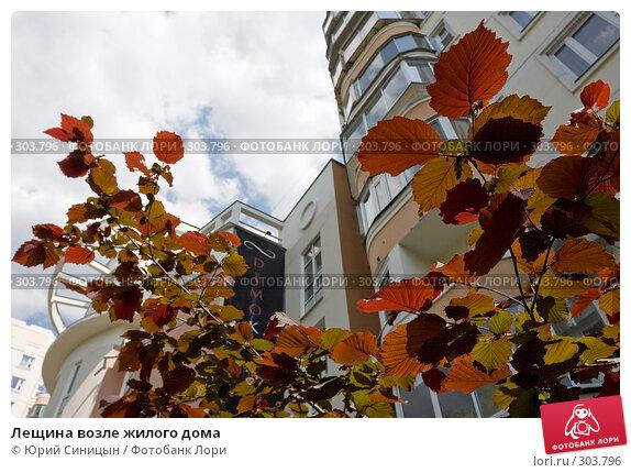 Лещина возле жилого дома, фото № 303796, снято 27 мая 2008 г. (c) Юрий Синицын / Фотобанк Лори
