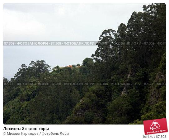 Лесистый склон горы, эксклюзивное фото № 87308, снято 5 августа 2007 г. (c) Михаил Карташов / Фотобанк Лори