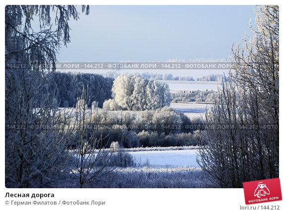 Лесная дорога, фото № 144212, снято 8 ноября 2007 г. (c) Герман Филатов / Фотобанк Лори