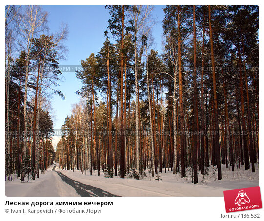Лесная дорога зимним вечером, фото № 136532, снято 24 февраля 2007 г. (c) Ivan I. Karpovich / Фотобанк Лори