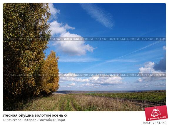 Купить «Лесная опушка золотой осенью», фото № 151140, снято 8 октября 2006 г. (c) Вячеслав Потапов / Фотобанк Лори