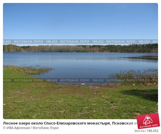 Лесное озеро около Спасо-Елизаровского монастыря, Псковская область, фото № 188652, снято 7 мая 2007 г. (c) ИВА Афонская / Фотобанк Лори