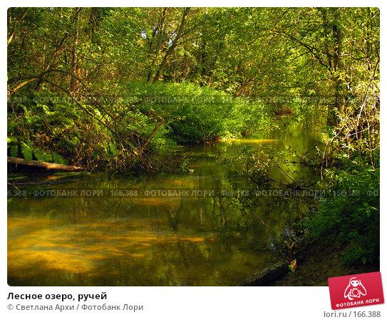 Лесное озеро, ручей, фото № 166388, снято 15 августа 2005 г. (c) Светлана Архи / Фотобанк Лори