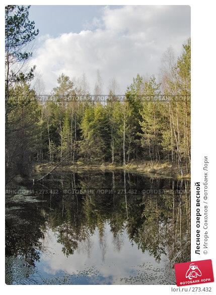 Лесное озеро весной, фото № 273432, снято 28 апреля 2008 г. (c) Игорь Соколов / Фотобанк Лори