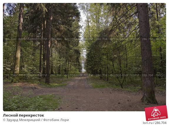 Лесной перекресток, фото № 286704, снято 12 мая 2008 г. (c) Эдуард Межерицкий / Фотобанк Лори