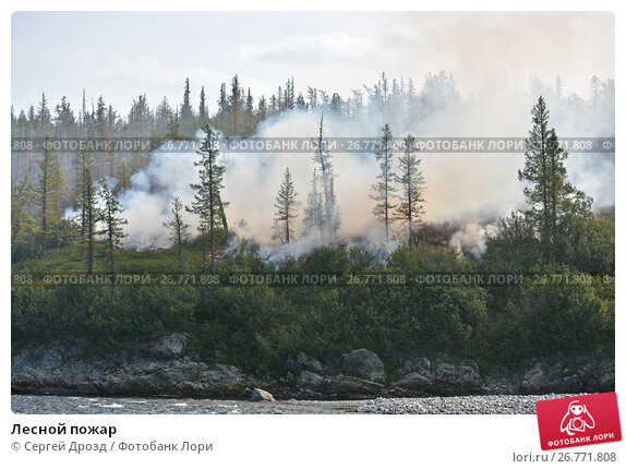 Лесной пожар, фото № 26771808, снято 2 августа 2017 г. (c) Сергей Дрозд / Фотобанк Лори