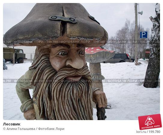 Лесовик, эксклюзивное фото № 199780, снято 11 февраля 2008 г. (c) Алина Голышева / Фотобанк Лори