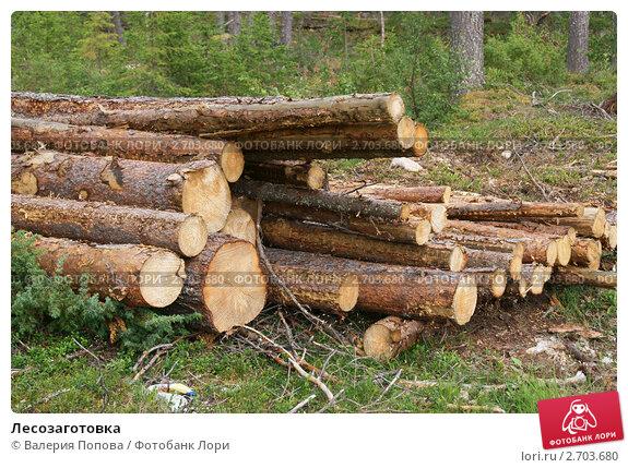 Купить «Лесозаготовка», фото № 2703680, снято 27 июля 2011 г. (c) Валерия Попова / Фотобанк Лори