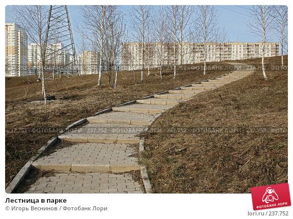 Лестница в парке, фото № 237752, снято 30 марта 2008 г. (c) Игорь Веснинов / Фотобанк Лори