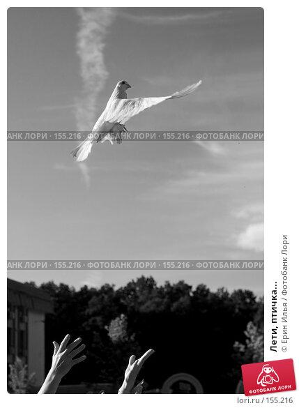 Лети, птичка..., фото № 155216, снято 18 июля 2007 г. (c) Ерин Илья / Фотобанк Лори