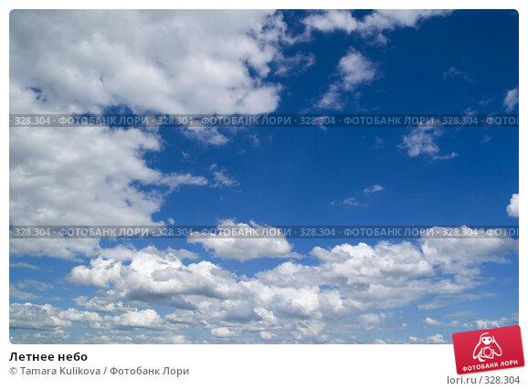 Купить «Летнее небо», фото № 328304, снято 19 июня 2008 г. (c) Tamara Kulikova / Фотобанк Лори