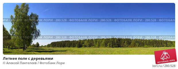 Летнее поле с деревьями, фото № 280528, снято 2 декабря 2016 г. (c) Алексей Пантелеев / Фотобанк Лори