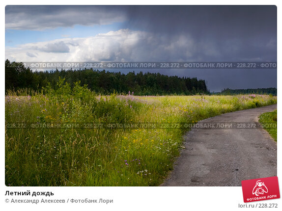 Летний дождь, эксклюзивное фото № 228272, снято 19 июля 2006 г. (c) Александр Алексеев / Фотобанк Лори