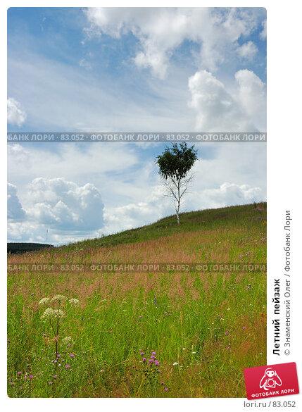 Летний  пейзаж, эксклюзивное фото № 83052, снято 15 июля 2007 г. (c) Знаменский Олег / Фотобанк Лори