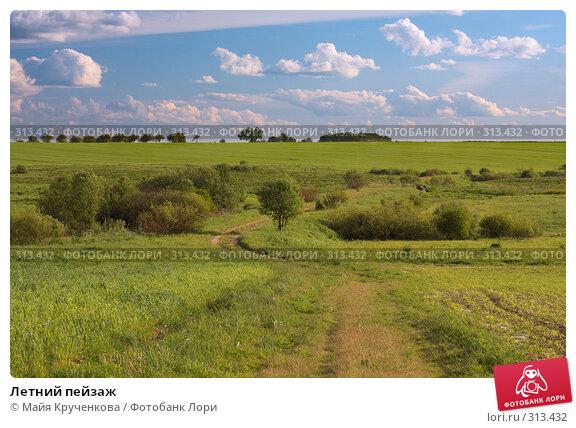 Летний пейзаж, фото № 313432, снято 31 мая 2008 г. (c) Майя Крученкова / Фотобанк Лори
