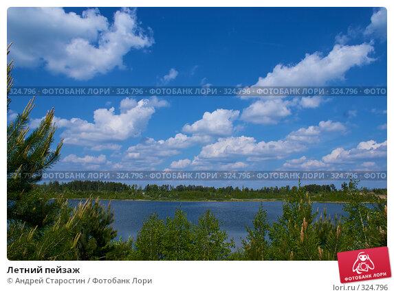 Летний пейзаж, фото № 324796, снято 18 мая 2008 г. (c) Андрей Старостин / Фотобанк Лори