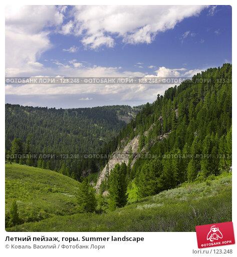 Купить «Летний пейзаж, горы. Summer landscape», фото № 123248, снято 16 декабря 2017 г. (c) Коваль Василий / Фотобанк Лори