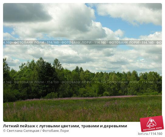 Летний пейзаж с луговыми цветами, травами и деревьями, фото № 114160, снято 21 июля 2007 г. (c) Светлана Силецкая / Фотобанк Лори