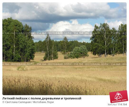 Летний пейзаж с полем,деревьями и тропинкой, фото № 114164, снято 21 июля 2007 г. (c) Светлана Силецкая / Фотобанк Лори