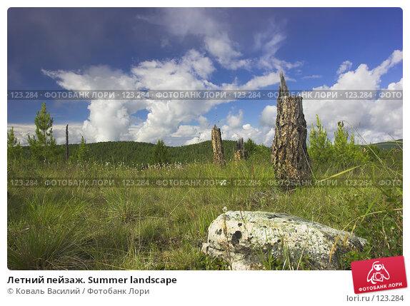 Летний пейзаж. Summer landscape, фото № 123284, снято 22 июля 2017 г. (c) Коваль Василий / Фотобанк Лори