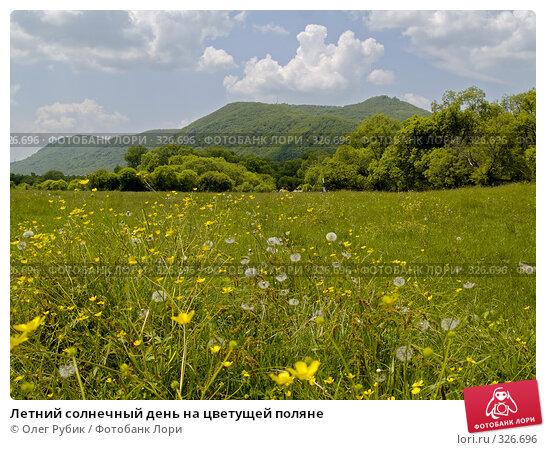 Летний солнечный день на цветущей поляне, фото № 326696, снято 8 июня 2008 г. (c) Олег Рубик / Фотобанк Лори