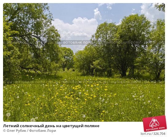 Купить «Летний солнечный день на цветущей поляне», фото № 326704, снято 22 апреля 2018 г. (c) Олег Рубик / Фотобанк Лори