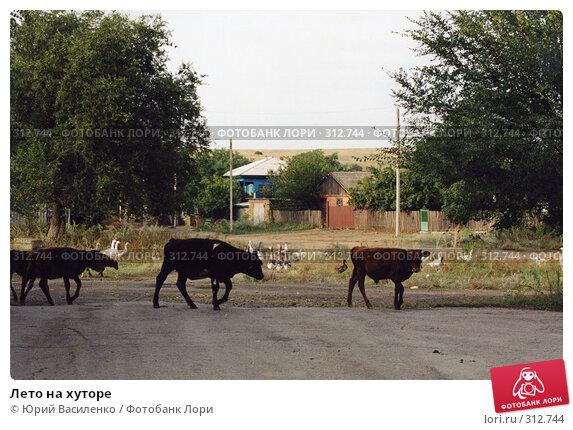 Лето на хуторе, фото № 312744, снято 28 марта 2017 г. (c) Юрий Василенко / Фотобанк Лори