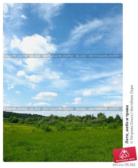 Лето, небо и трава, фото № 55352, снято 10 июня 2006 г. (c) Петрова Ольга / Фотобанк Лори