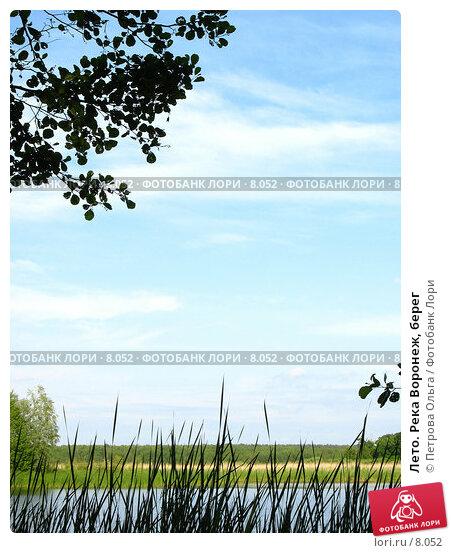 Лето. Река Воронеж, берег, фото № 8052, снято 10 июня 2006 г. (c) Петрова Ольга / Фотобанк Лори