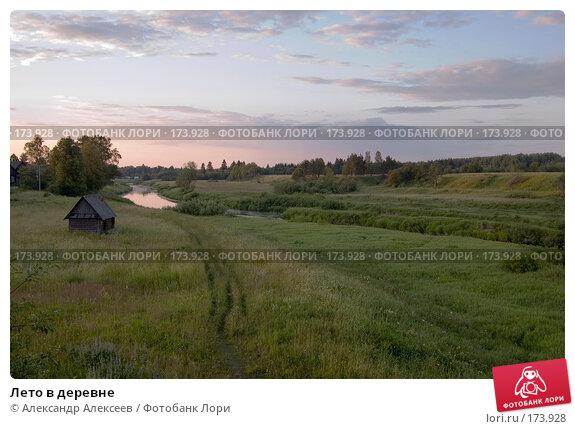Лето в деревне, эксклюзивное фото № 173928, снято 30 июня 2007 г. (c) Александр Алексеев / Фотобанк Лори