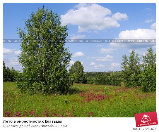 Лето в окрестностях Елатьмы, фото № 330676, снято 14 июня 2008 г. (c) Александр Бобиков / Фотобанк Лори