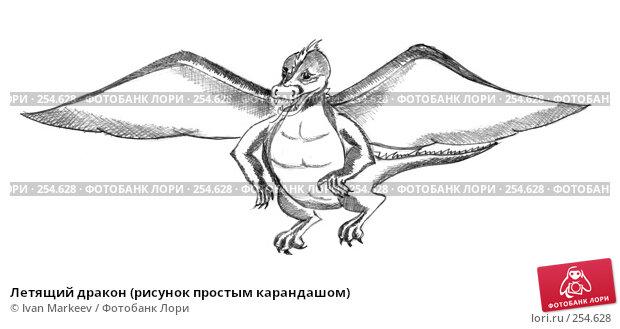 Купить «Летящий дракон (рисунок простым карандашом)», иллюстрация № 254628 (c) Ivan Markeev / Фотобанк Лори
