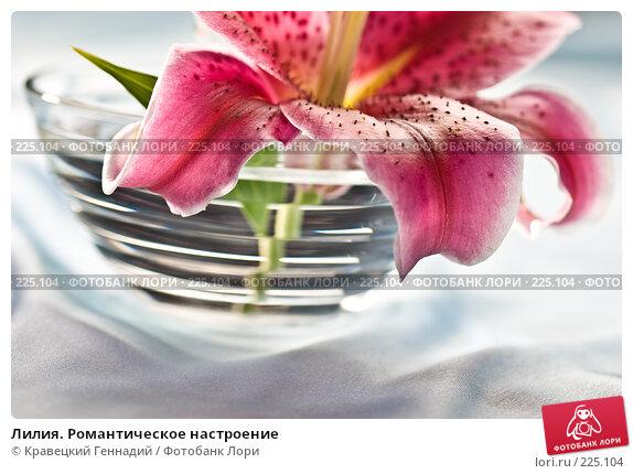 Купить «Лилия. Романтическое настроение», фото № 225104, снято 3 августа 2005 г. (c) Кравецкий Геннадий / Фотобанк Лори