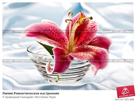 Лилия.Романтическое настроение, фото № 231268, снято 3 августа 2005 г. (c) Кравецкий Геннадий / Фотобанк Лори