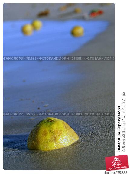Лимон на берегу моря, фото № 75888, снято 31 мая 2007 г. (c) Валерий Шанин / Фотобанк Лори