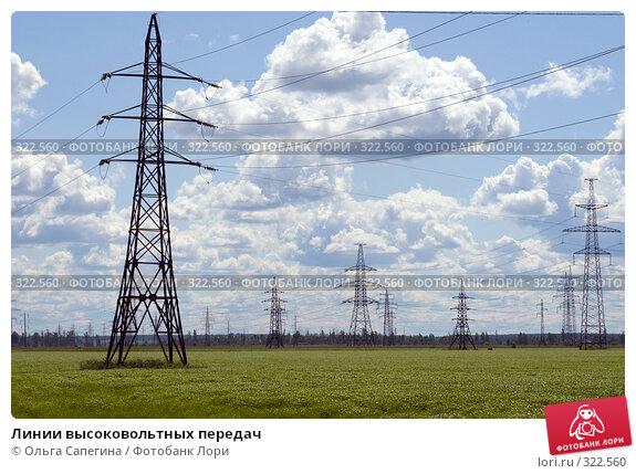 Линии высоковольтных передач, фото № 322560, снято 20 июня 2007 г. (c) Ольга Сапегина / Фотобанк Лори